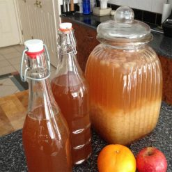 Assist your immune system with water kefir grains