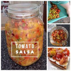 Tomato Salsa with Milk Kefir Whey