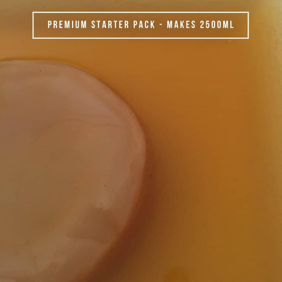 Organic Kombucha - Premium Starter Pack - 2.5L